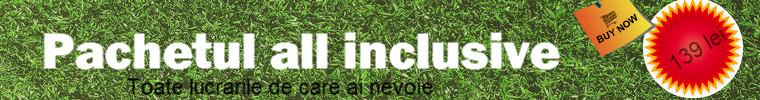 all inc